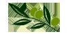 rametto olive logo il frantoio agriturismo castiglione della pescaia con piscina