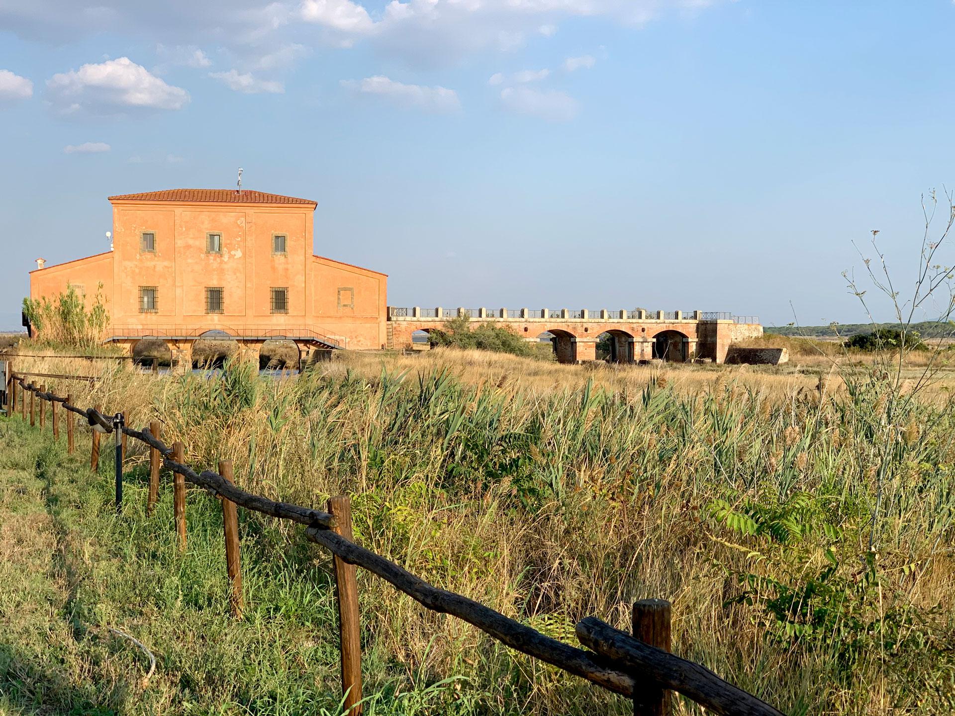 Agriturismo a Castiglione della Pescaia con piscina vicino al Mare vista Diaccia Botrona