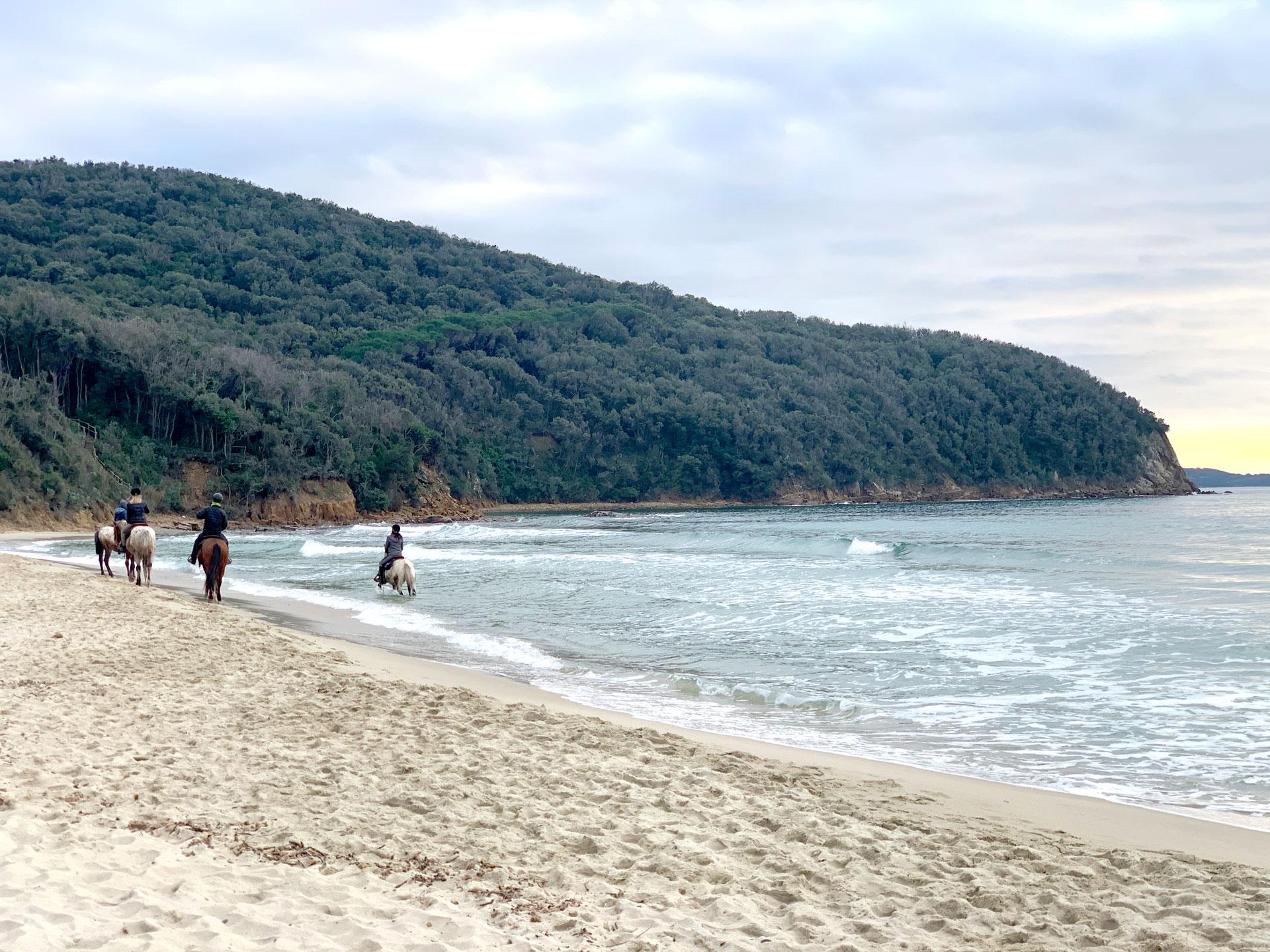 Castiglione della Pescaia Agriturismo Il Frantoio Attività ed Escursioni nei dintorni - Spiaggia di Calaviolina